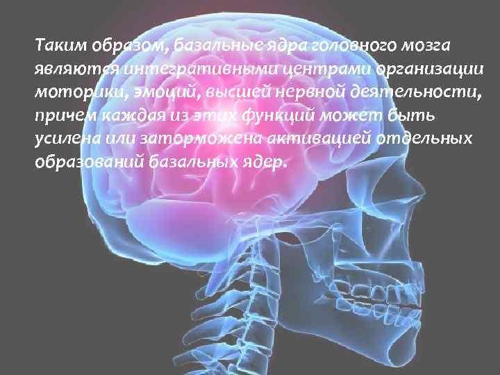 Таким образом, базальные ядра головного мозга являются интегративными центрами организации моторики, эмоций, высшей нервной