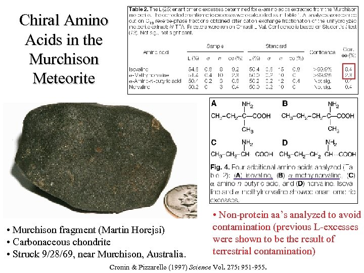 Chiral Amino Acids in the Murchison Meteorite • Murchison fragment (Martin Horejsi) • Carbonaceous