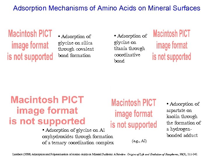 Adsorption Mechanisms of Amino Acids on Mineral Surfaces • Adsorption of glycine on silica