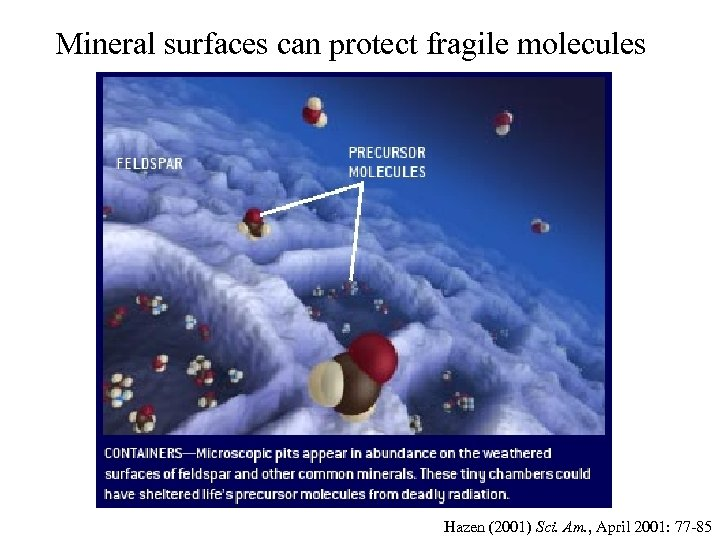 Mineral surfaces can protect fragile molecules Hazen (2001) Sci. Am. , April 2001: 77