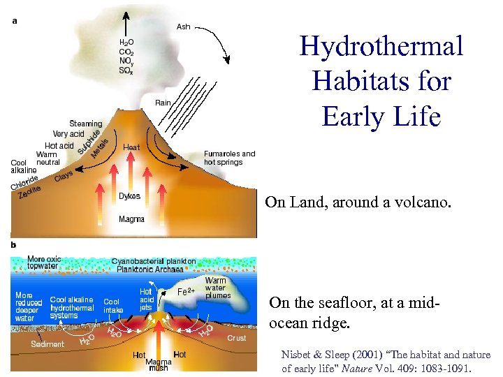 Hydrothermal Habitats for Early Life On Land, around a volcano. On the seafloor, at