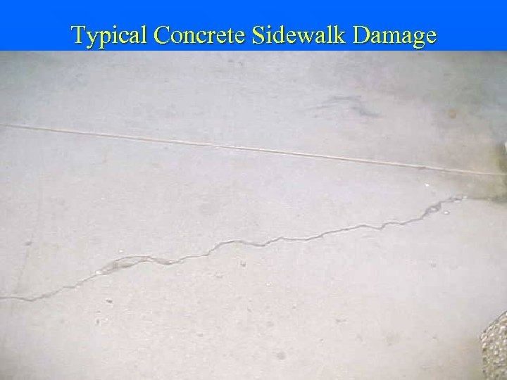 Typical Concrete Sidewalk Damage