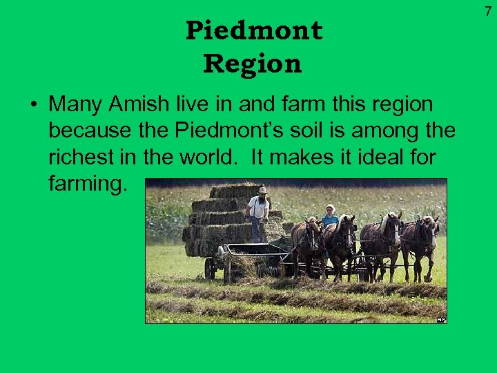 Piedmont Region • Many Amish live in and farm this region because the Piedmont's