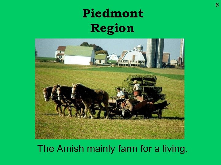 Piedmont Region The Amish mainly farm for a living. 6