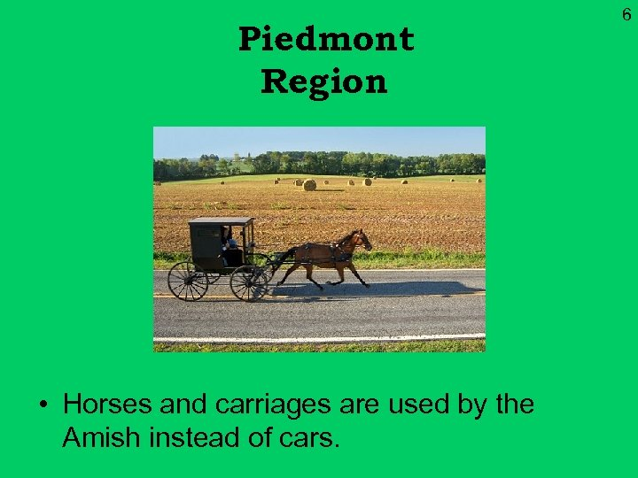 Piedmont Region • Horses and carriages are used by the Amish instead of cars.