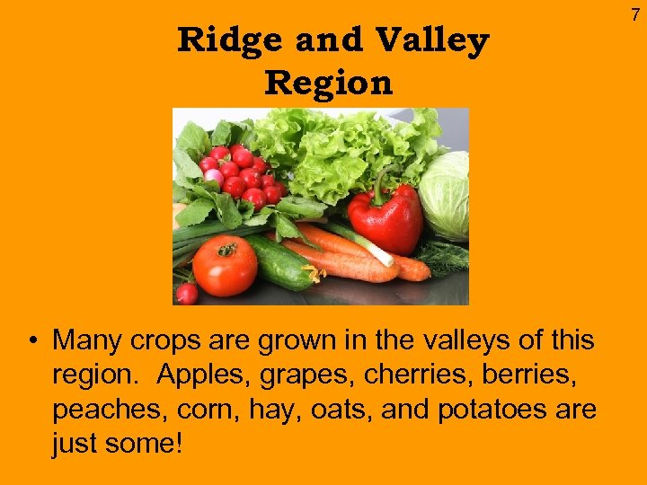 Ridge and Valley Region • Many crops are grown in the valleys of this
