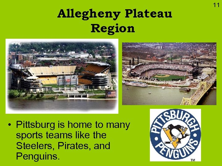 Allegheny Plateau Region • Pittsburg is home to many sports teams like the Steelers,
