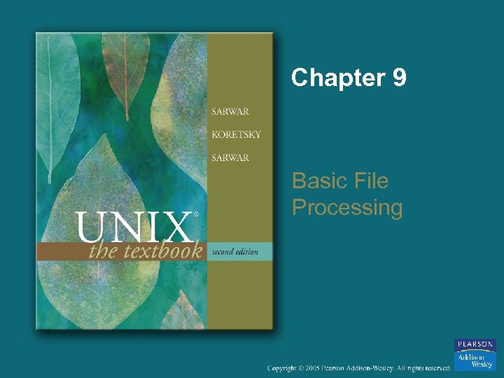 Chapter 9 Basic File Processing