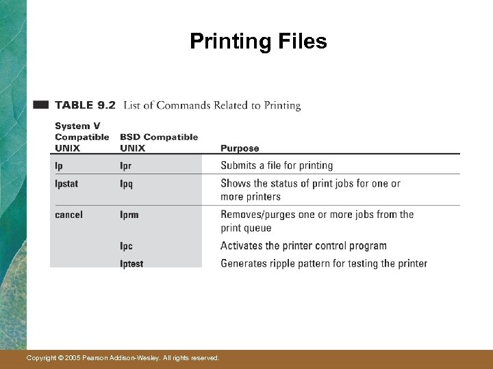 Printing Files Copyright © 2005 Pearson Addison-Wesley. All rights reserved.