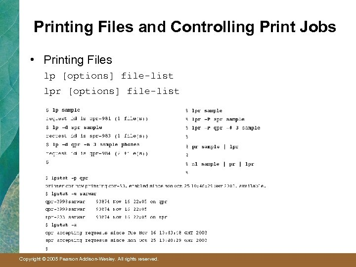 Printing Files and Controlling Print Jobs • Printing Files lp [options] file-list lpr [options]