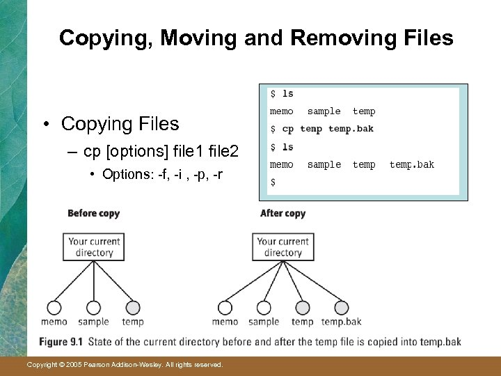 Copying, Moving and Removing Files • Copying Files – cp [options] file 1 file
