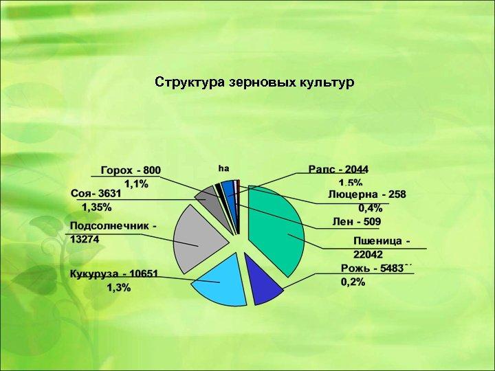Структура зерновых культур