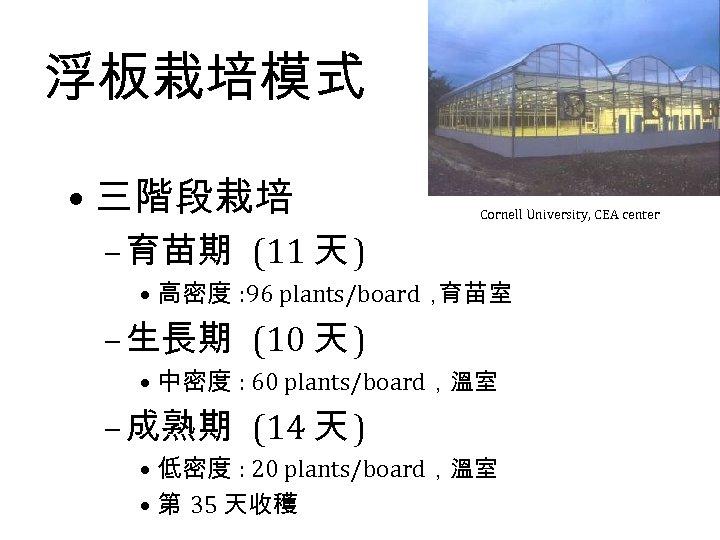 浮板栽培模式 • 三階段栽培 Cornell University, CEA center – 育苗期 (11 天 ) • 高密度