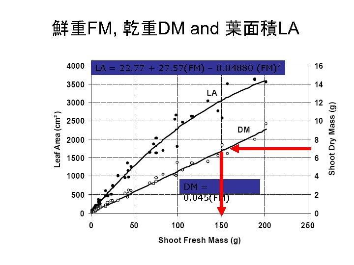 鮮重FM, 乾重DM and 葉面積LA LA = 22. 77 + 27. 57(FM) – 0. 04880