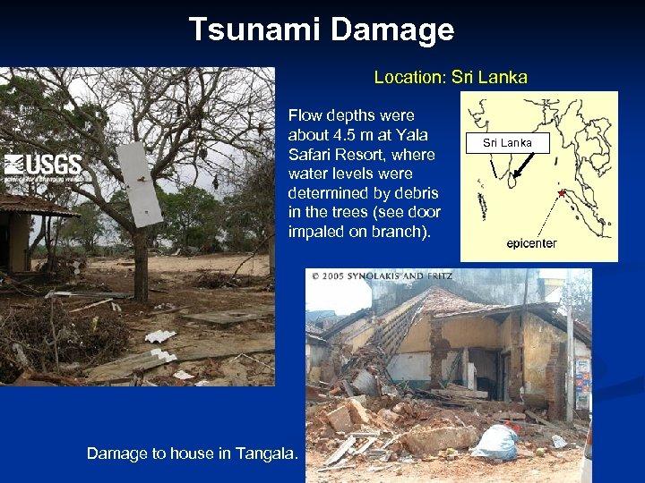 Tsunami Damage Location: Sri Lanka Flow depths were about 4. 5 m at Yala