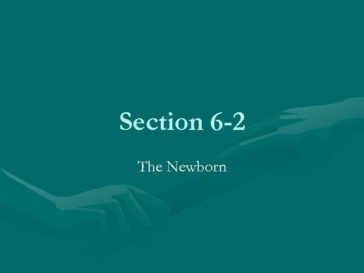 Section 6 -2 The Newborn
