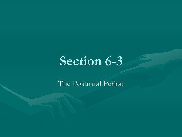 Section 6 -3 The Postnatal Period