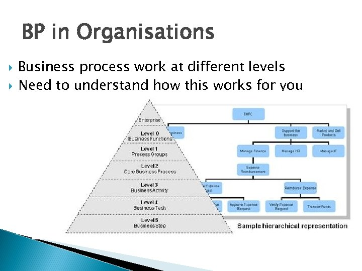 BP in Organisations Business process work at different levels Need to understand how this
