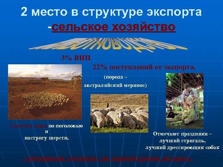 2 место в структуре экспорта -сельское хозяйство 3% ВНП 22% поступлений от экспорта. (порода