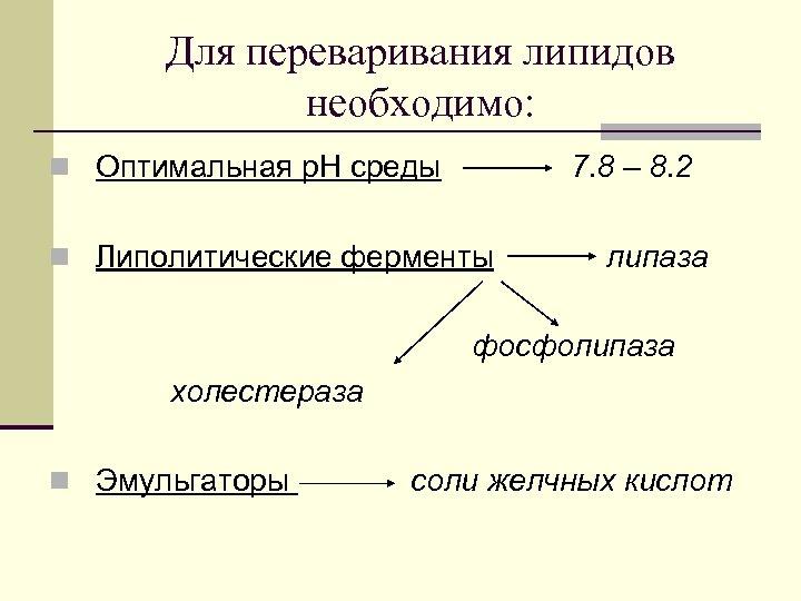 Для переваривания липидов необходимо: n Оптимальная р. Н среды 7. 8 – 8. 2