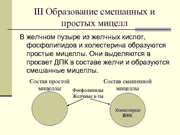 ΙΙΙ Образование смешанных и простых мицелл В желчном пузыре из желчных кислот, фосфолипидов и