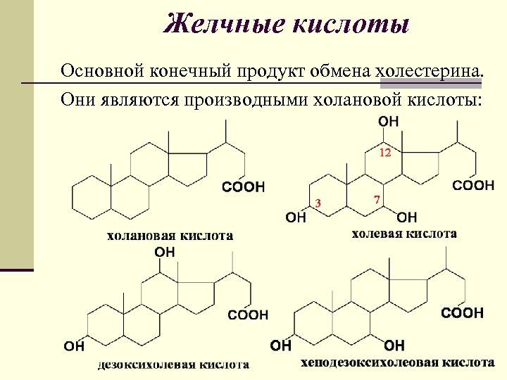Желчные кислоты Основной конечный продукт обмена холестерина. Они являются производными холановой кислоты: