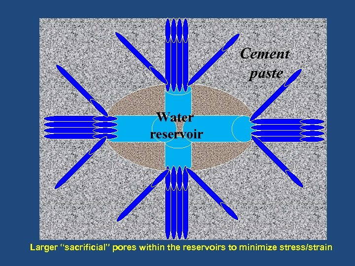 "Cement paste Water reservoir Larger ""sacrificial"" pores within the reservoirs to minimize stress/strain"