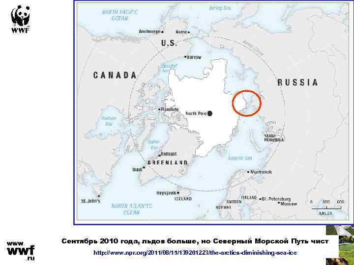 Сентябрь 2010 года, льдов больше, но Северный Морской Путь чист http: //www. npr. org/2011/08/15/139261223/the-arctics-diminishing-sea-ice