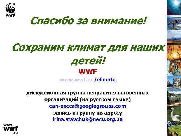 Спасибо за внимание! Сохраним климат для наших детей! WWF www. wwf. ru /climate дискуссионная