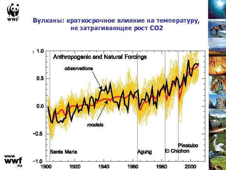 Вулканы: краткосрочное влияние на температуру, не затрагивающее рост СО 2