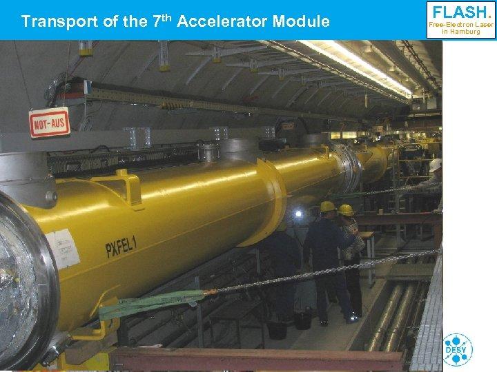 Transport of the 7 th Accelerator Module FLASH. Free-Electron Laser in Hamburg Siegfried Schreiber