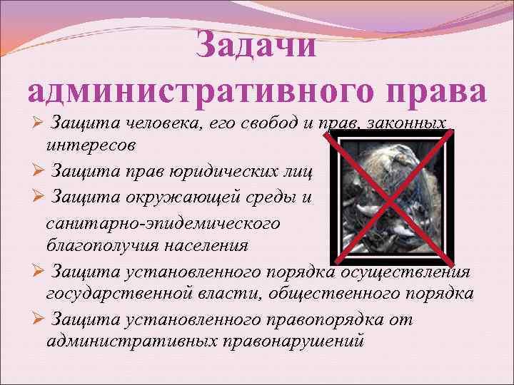 Задачи административного права Ø Защита человека, его свобод и прав, законных интересов Ø Защита