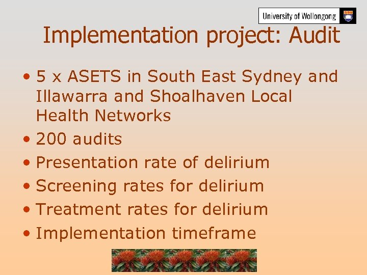 Implementation project: Audit • 5 x ASETS in South East Sydney and Illawarra and