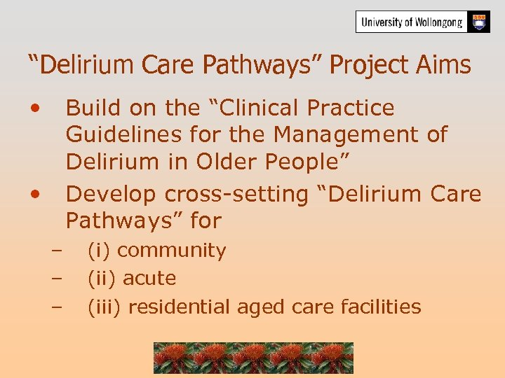"""""""Delirium Care Pathways"""" Project Aims • Build on the """"Clinical Practice Guidelines for the"""