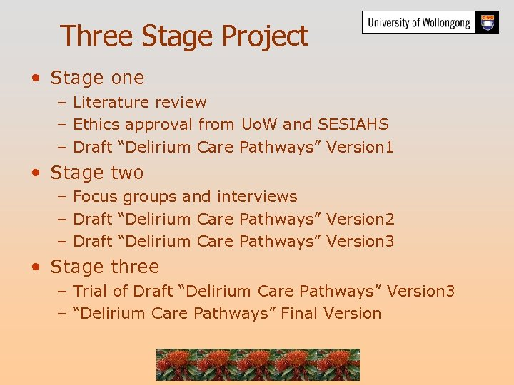 Three Stage Project • Stage one – Literature review – Ethics approval from Uo.