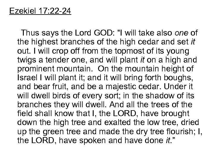 """Ezekiel 17: 22 -24 Thus says the Lord GOD: """"I will take also one"""