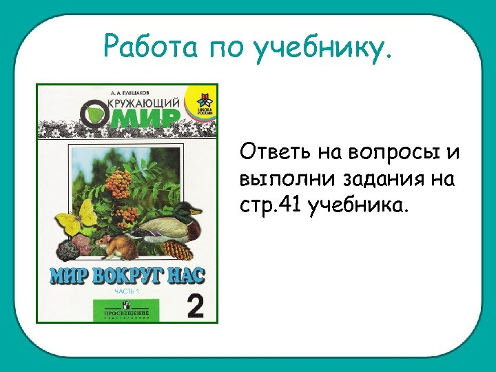 Работа по учебнику. Ответь на вопросы и выполни задания на стр. 41 учебника.