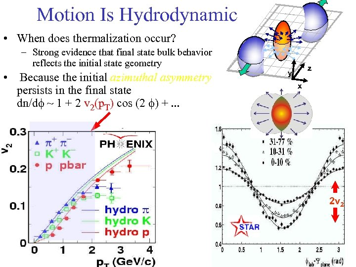 Motion Is Hydrodynamic • When does thermalization occur? – Strong evidence that final state