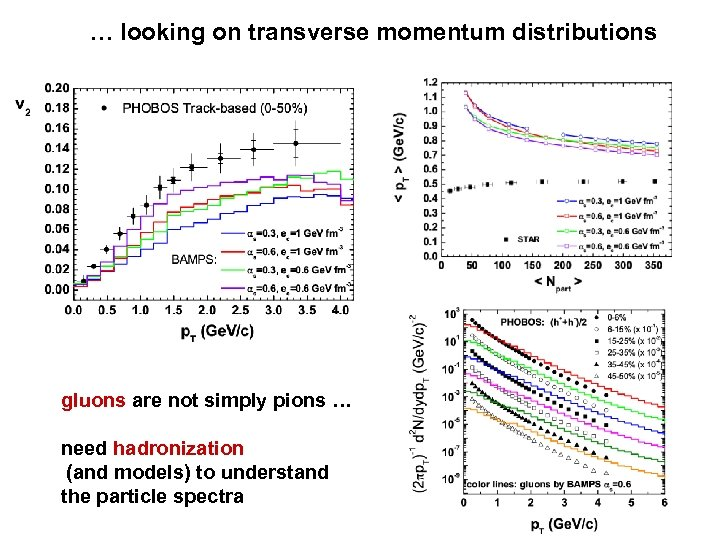 … looking on transverse momentum distributions gluons are not simply pions … need hadronization