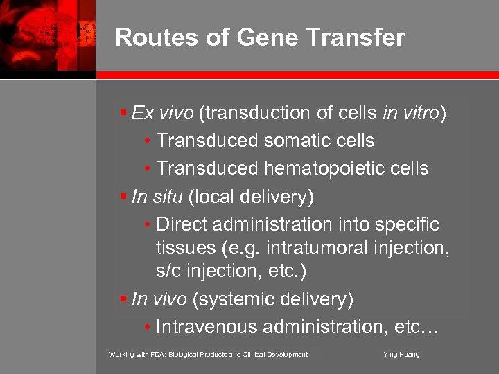 Routes of Gene Transfer § Ex vivo (transduction of cells in vitro) • Transduced