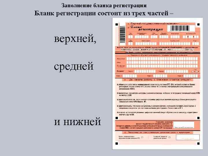 Заполнение бланка регистрации Бланк регистрации состоит из трех частей – верхней, средней и нижней