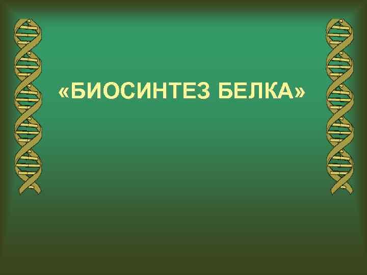 «БИОСИНТЕЗ БЕЛКА»