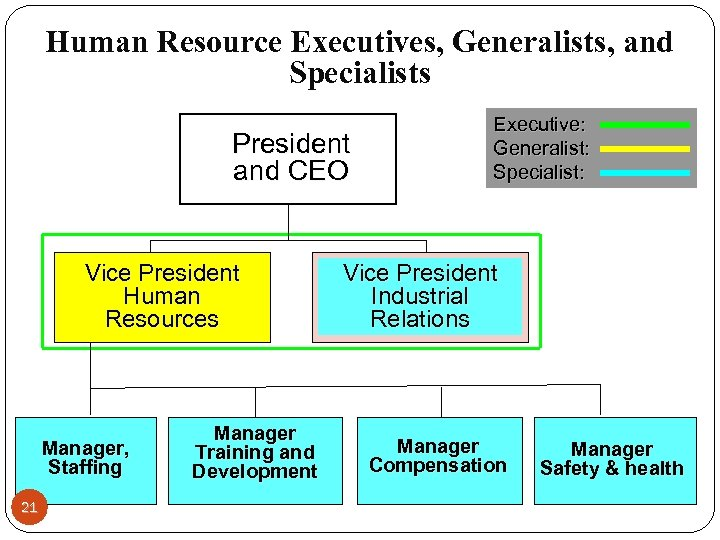 Human Resource Executives, Generalists, and Specialists President and CEO Vice President Human Resources Manager,
