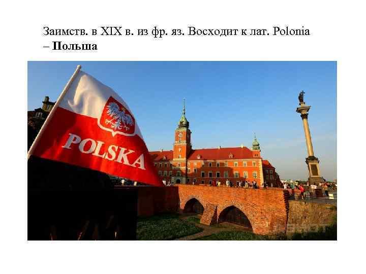 Заимств. в XIX в. из фр. яз. Восходит к лат. Polonia – Польша
