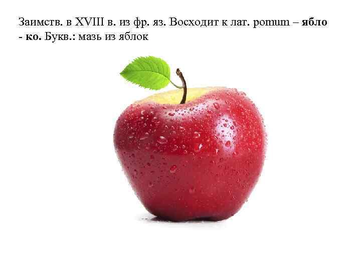 Заимств. в XVIII в. из фр. яз. Восходит к лат. pomum – ябло -