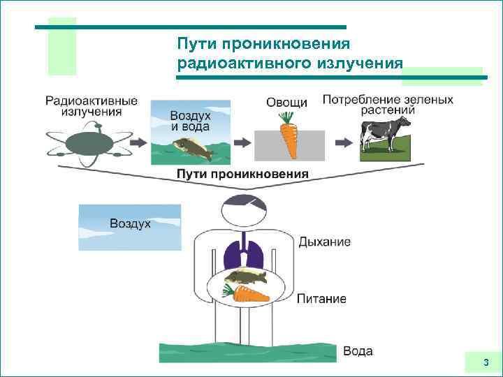 Пути проникновения радиоактивного излучения 3