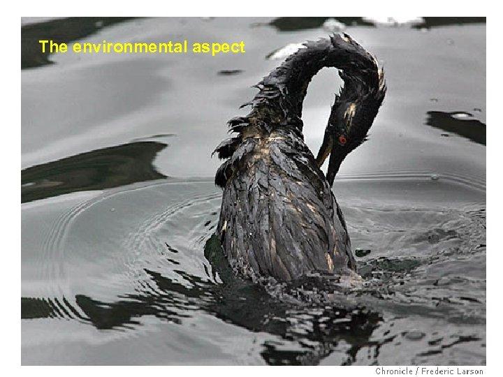 The environmental aspect