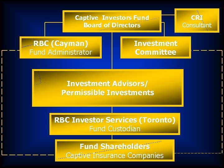 Captive Investors Fund Board of Directors RBC (Cayman) Fund Administrator Investment Committee Investment Advisors/