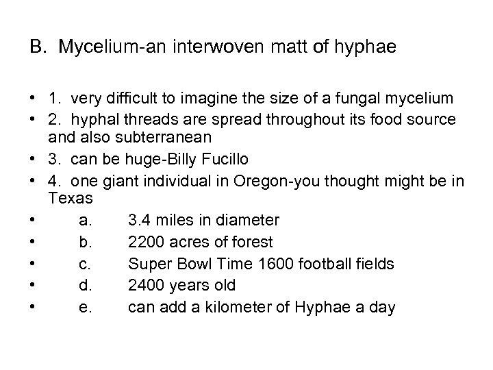 B. Mycelium-an interwoven matt of hyphae • 1. very difficult to imagine the size