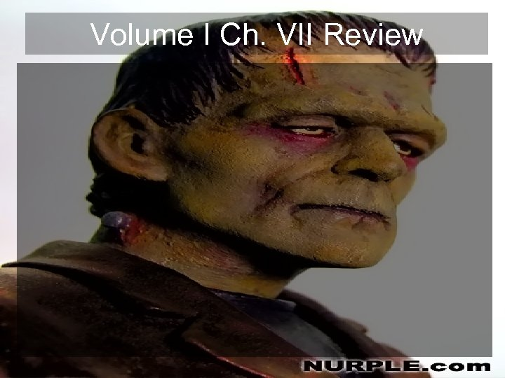 Volume I Ch. VII Review